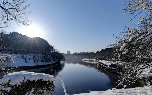 雪の千鳥ヶ淵