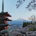 富士山と五重塔と桜